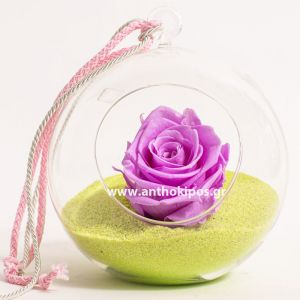 Glass ball with lilac rose that lives for ever