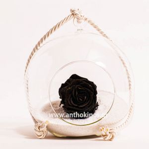 Glass ball with black rose that lives for ever