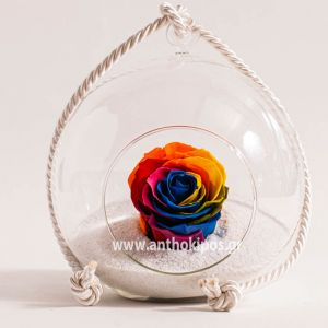 Glass ball with rainbow rose that lives for ever
