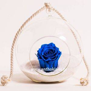 Glass ball with blue rose that lives for ever