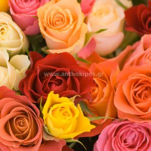 Ντουζίνα-Ανθοδέσμη με πολύχρωμα τριαντάφυλλα (12τεμ.)