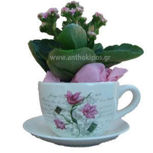 Arrangement with kalachoe plant in cup
