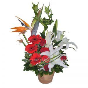 Σύνθεση λουλουδιών σε κεραμικό κασπώ