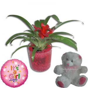 Flower arrangement for girl with a balloon and a teddy bear