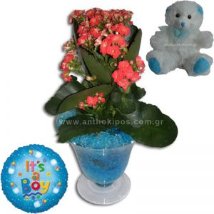Arrangement for boy with teddy bear and balloon