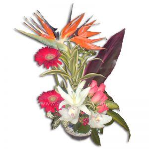 Σύνθεση με λουλούδια σε πήλινο κασπώ