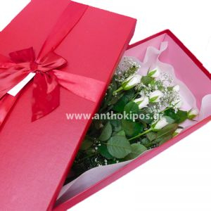 White roses in red box