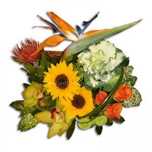 Σύνθεση με λουλούδια σε μπαουλάκι με πορτοκαλί τριαντάφυλλα, κίτρινες ορχιδέες(σιμπίτιουμ), κίτρινες ζέρμπερες, πουλί του παραδείσου και φυλλώματα εισαγωγής