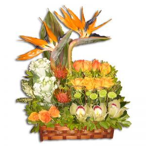 Ανθοσύνθεση σε μπαουλάκι γκρουπαριστή με τριαντάφυλλα, ζέρμπερες, ορχιδέες(σιμπίτιουμ), πουλιά του παραδείσου και φυλλώματα εισαγωγής