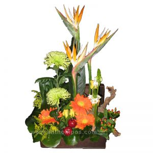 Flower Arrangement in trunk with yellow roses, orange gerberes, birds of paradise and import folliages