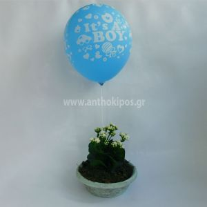 Flower arrangement for boy