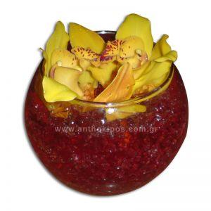 Orchids (cymbidium) in glass