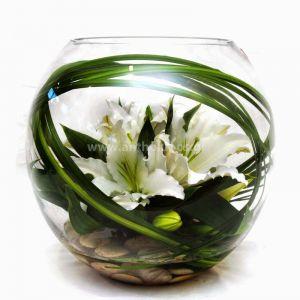 Oriental in glass