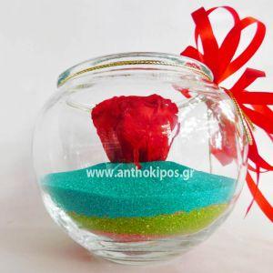 Τριαντάφυλλο κόκκινο που ζει για πάντα