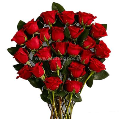 Red roses (44 pcs.)